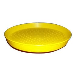 Buy Chick Feeders Tray