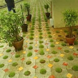 Decorative Garden Paver Blocks ...