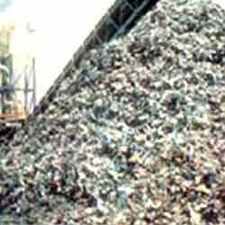 Buy Shredded Scraps