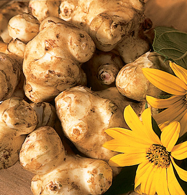 Buy Jerusalem Artichoke
