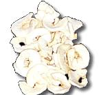 Buy Dried Apple Rings