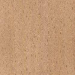 buy beech wood