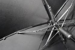 Buy Umbrella Rib Wire
