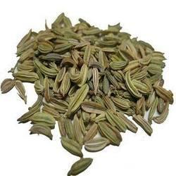 Buy Fennel Seeds
