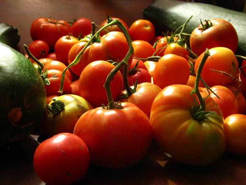 Buy Tomato Seeds