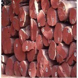 Buy Kapur Wood