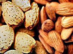 Buy Sweet Almond Oil