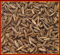 Buy Caraway Seeds