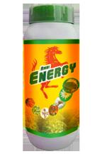 Buy Ambi Energy