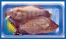 Buy Frozen Food Packaging