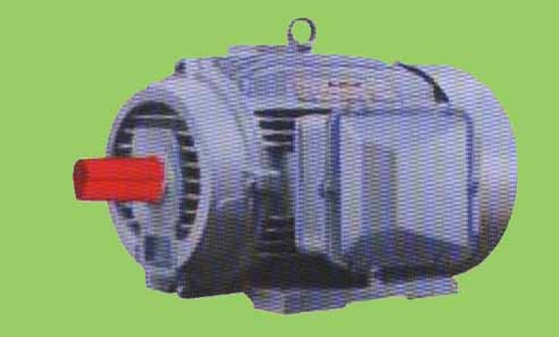 Buy Induction Motor Squirrel Cage TEFC