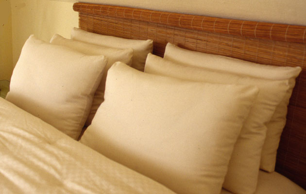 Buy Pillows