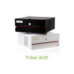 Buy Tribal Iace