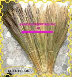 Buy Grass Broom