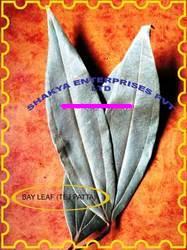 Buy Bay Leaf