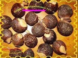 Buy Soap Nut