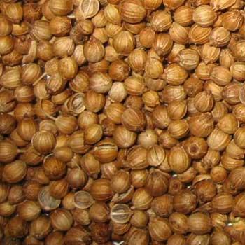 Buy Whole Coriander Seeds