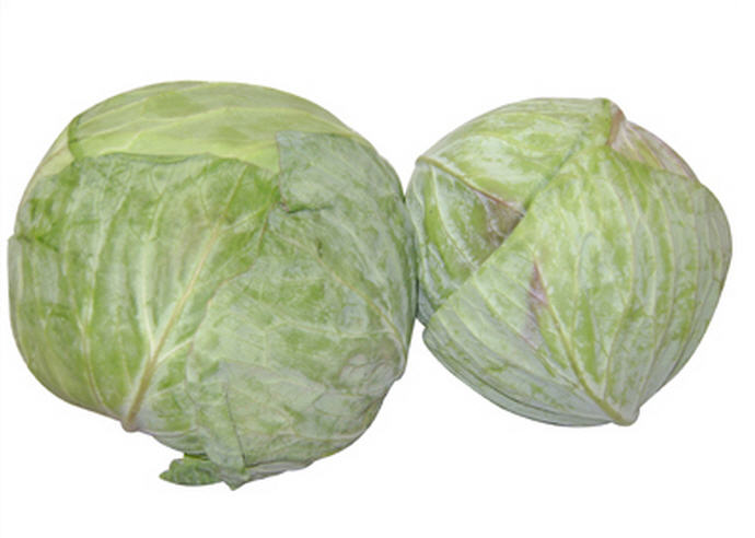Buy Cabbages