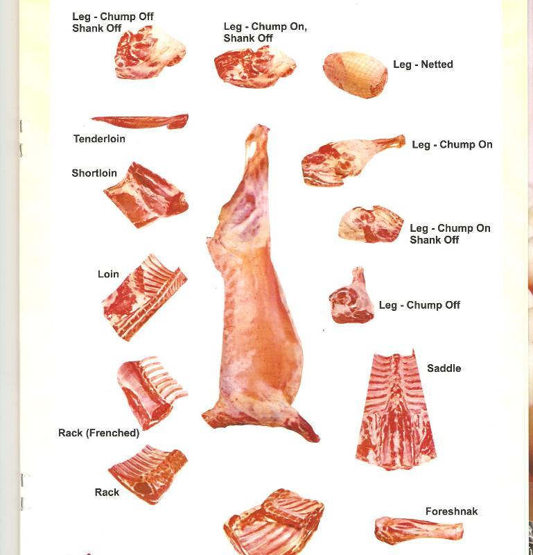 Goat Meat Buy In Mumbai
