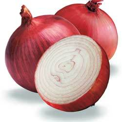 Buy Onion Seeds