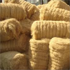 Buy Coir Fibre