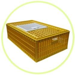 Buy Bird Transportation Cage