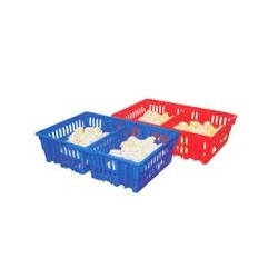 Buy Chick Transportation Tray