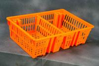 Buy Chick Basket