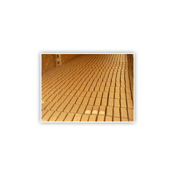 Buy Drying Shed With Bricks
