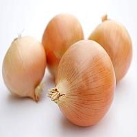 Buy Yellow Onions