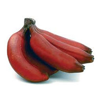 Buy Fresh Red Banana