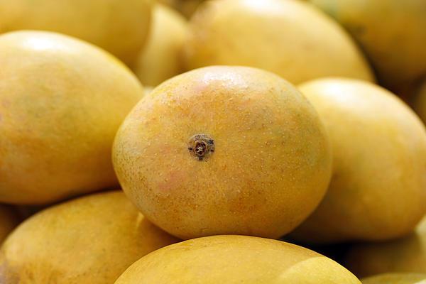 Buy Mangoes