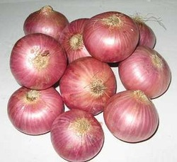 Buy Red Onions