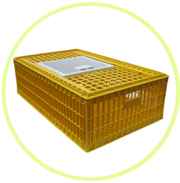 Brid transportation cage