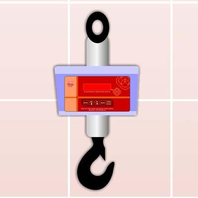 Buy Crane Scale