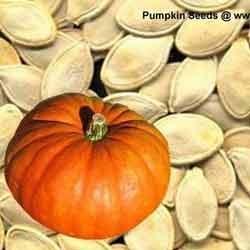 Buy Pumpkin Seeds