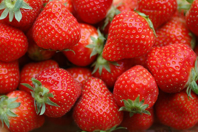 Buy Strawberry