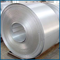 Buy Stainless Steel H.R. Plates