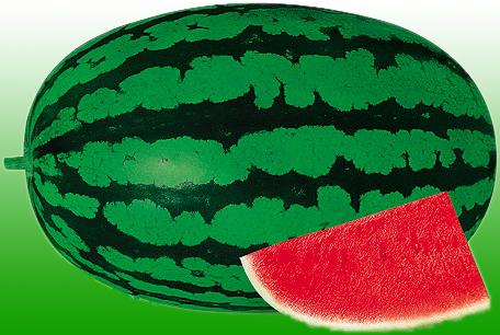 Buy Watermelon Seeds