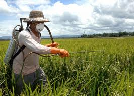 Buy Pesticides