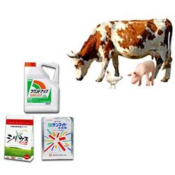 Buy Poultry And Cattle Feed Supplements