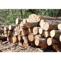 Buy Wood Preservative Ccb