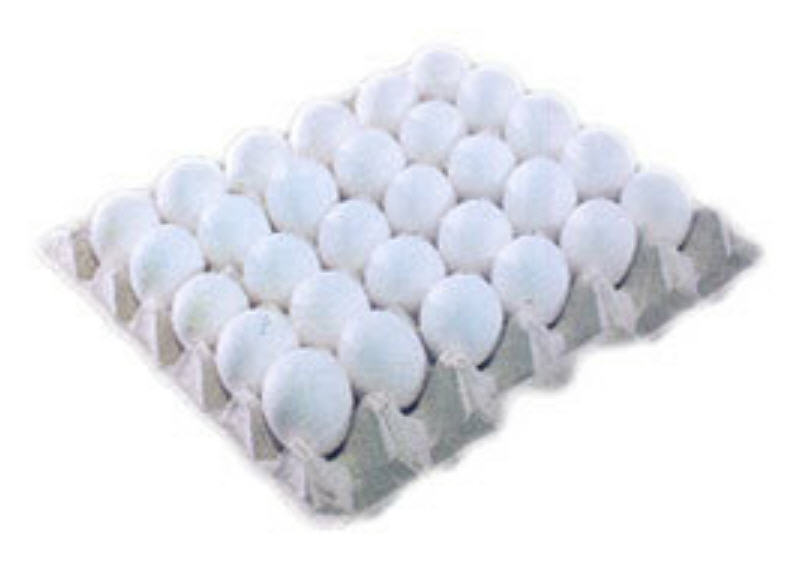 Buy Egg Trays