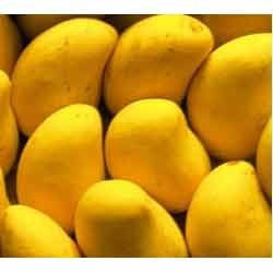 Buy Mangoes