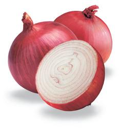 Buy Onion Seeds