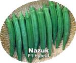 Buy Vegetable Crops Okra(Nazuk)