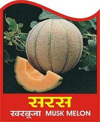 Buy Musk Melon