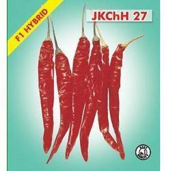 Buy Hybrid Chilli