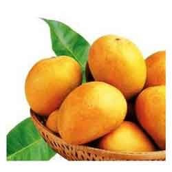 Buy Fresh Mangoes