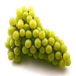 Buy Fresh Grapes
